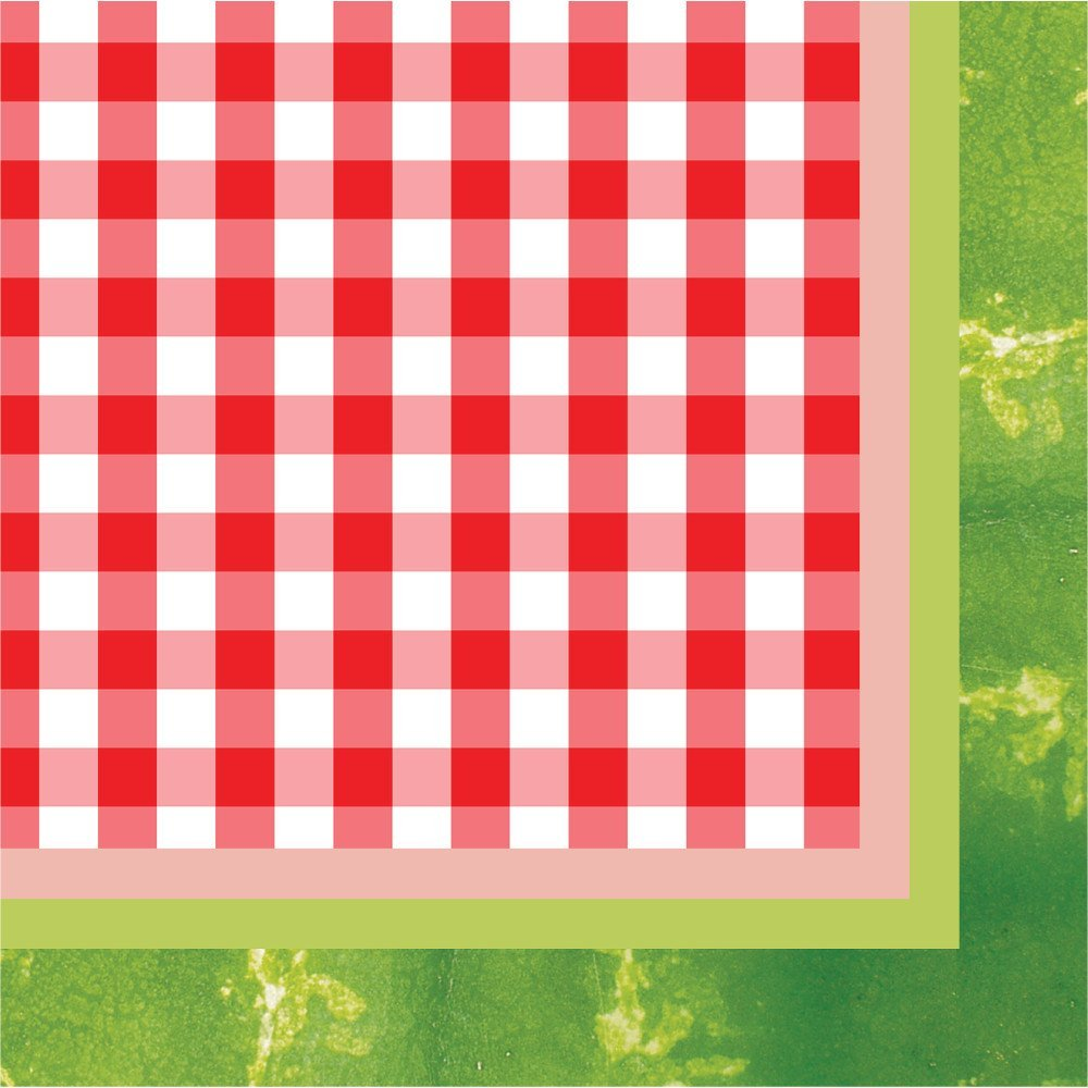 Watermelon Napkins Family & Friends Summer Picnic for Under $100