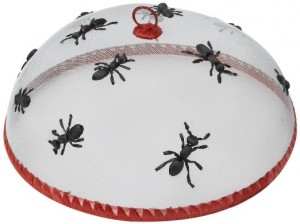 picnic ANTS decorations Family & Friends Summer Picnic for Under $100